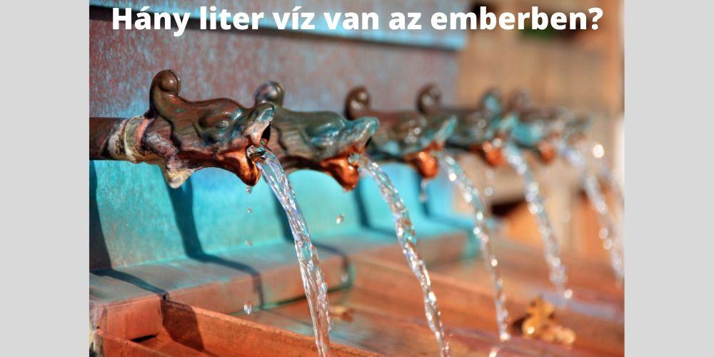 hány liter víz van az emberben