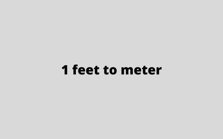 1 feet to meter