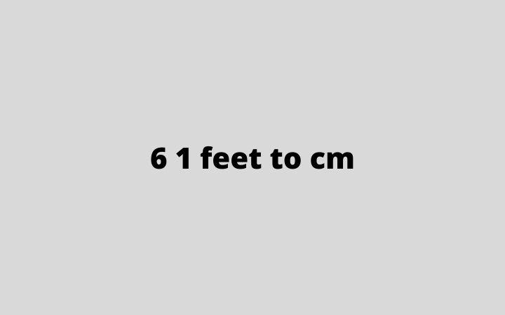 6 1 feet to cm